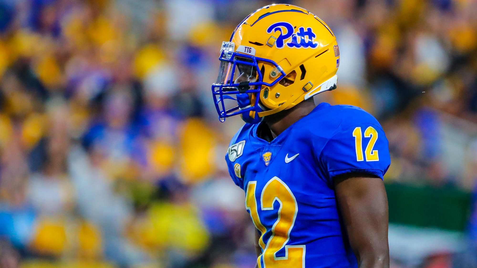 Pitt Panthers Currently in the NFL - Pitt Panthers #H2P
